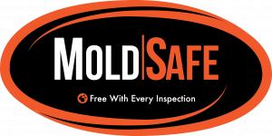 mold safe inspection
